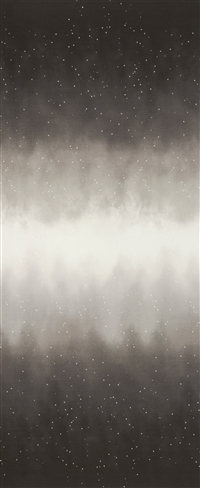 Ombre fabric that fades from deep earthy gray to white and back, with small white stars.