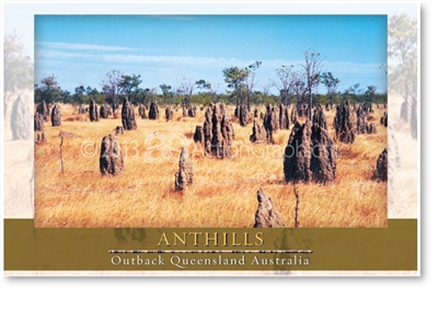Anthills - Small Magnets  AOBM-005
