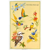 AUSTRALIAN BIRD LIFE Cotton/Linen Tea Towel - BC414