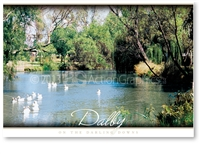 A quiet spot on Myall Creek  - Standard Postcard  DAL-016