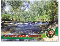 Adels Grove, Lawn Hill Creek, Fully Catered Camping Packages - Standard Postcard  LAW-008