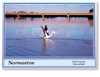 Normanton Gulf Country Queensland - DISCOUNTED Standard Postcard  NOR-098
