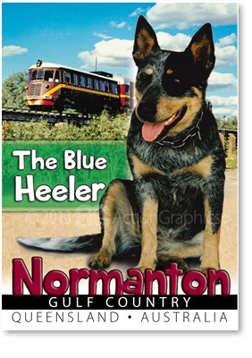 The Blue Heeler - Small Magnets  NORM-007