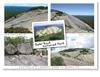 Bald Rock National Park - Standard Postcard  STP-009
