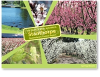 Spring Bloom in Stanthorpe - Standard Postcard  STP-165