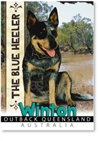 The Blue Heeler - Small Magnets  WINM-008