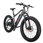 CIVI Predator Fat Tire 500W Electric Bike Matte Platinum Grey 2018 - On Sale NOW at Bikecraze.com