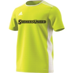 Replacement Training Jersey