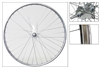 Parts - Cruiser Rear Wheel