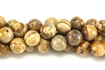 Gemstone Bead, Picture Jasper, Round, 12MM