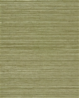 Sage Green Natural Sisal Grasscloth