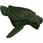 leatherback turtle puppet