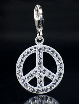 Sterling Silver Piece Charm