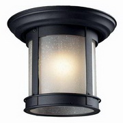 Z-Lite Outdoor Flush Mount 1-Light Ceiling Light 514F
