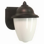Lormont 1-Light Outdoor Wall Lantern