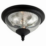 Sea Gull Lighting Lambert Hill 2-Light Outdoor Close to Ceiling [88068]