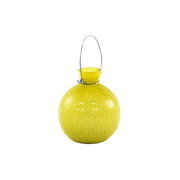 Achla Goblet Rooting Vase Yellow