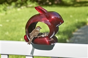 Good Directions Enchanted Rabbit - Bird Feeder - Ruby