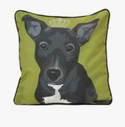 Imax, Roxy Dog Pillow (97279)