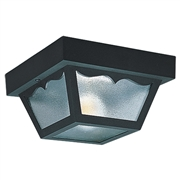 Outdoor Ceiling 1-Light Fixture