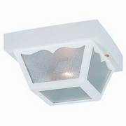Outdoor 2-Light Close to Ceiling Fixture