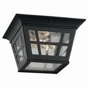 Herrington 2-Light Outdoor Flush Mount