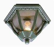 Trans Globe Lighting, [4558] 1 Light Flush-mount
