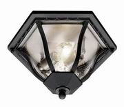 Trans Globe Lighting, [4559] 2 Light Flush-mount