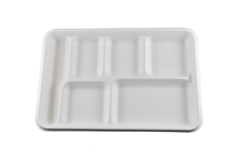 Compostable 6 Compartment Tray - 250/Cs (2 X 125)
