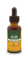 Olive Leaf: Dropper Bottle / Organic Alcoholic Extract: 1 Fluid Ounce