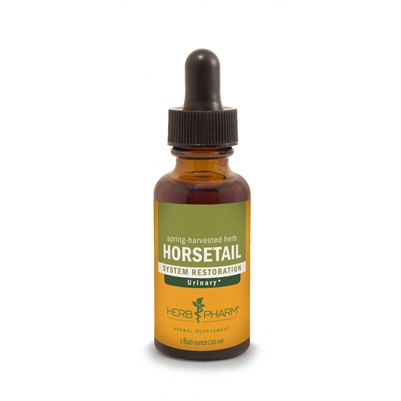 Horsetail: Dropper Bottle / Organic Alcoholic Extract: 1 Fluid Ounce