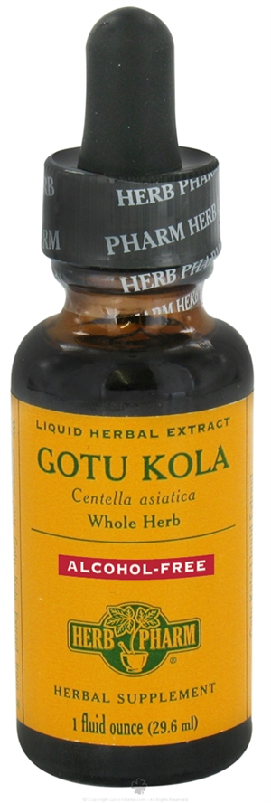 Gotu Kola Glycerite: Dropper Bottle / Organic Non-Alcoholic Extract: 1 Fluid Ounce