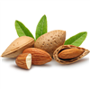 Sweet Almond Oil: Bottle / Liquid Oil: 16 Fluid Ounces