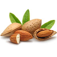 Almond Oil: Bottle / Liquid Oil: 8 Fluid Ounces