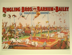 Ringling Trapeze Poster