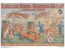 Ringling African Jungle Circus Poster