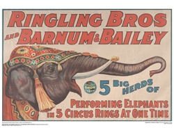 Ringling 5 Big Herds of Performing Elephants Poster