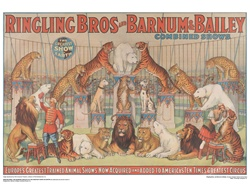 Ringling Animal Show Poster