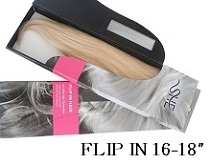 Flip In Hair Extensions by SHE
