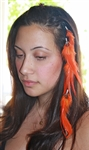 Feather Extensions (clips)
