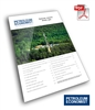 Report | Shale Gas