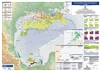 Map | Oil & Gas Map of The Gulf of Mexico