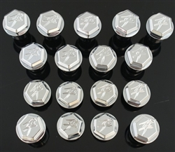 17 Piece Custom Billet Chrome Kanji  Hex Fairing Bolt Kit!