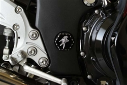 Black/Silver Ball Cut Hex Kanji Anodized Swingarm Bolt Frame Covers