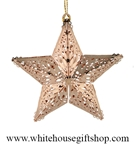 Shining Star Ornament