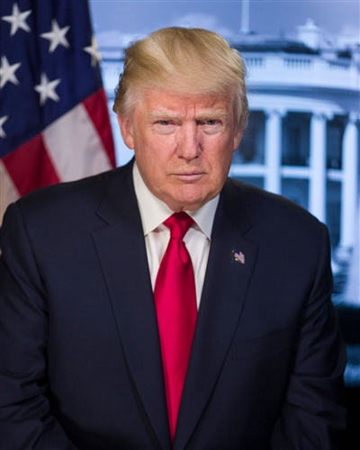 official portrait of president donald j trump