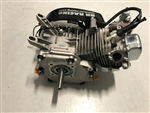Engine, Racing, 212 Predator, Modified Level 4 (7537) - READY TO SHIP, 19.14 hp