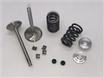 Valve & Spring Package, Stainless Steel - GX390 Single
