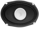 "6"" x 9"" SHIELDED, Dual Cone Speaker"