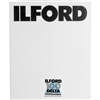"Ilford Delta 100 Professional Black and White Negative Film (4 x 5"", 25 Sheets)"